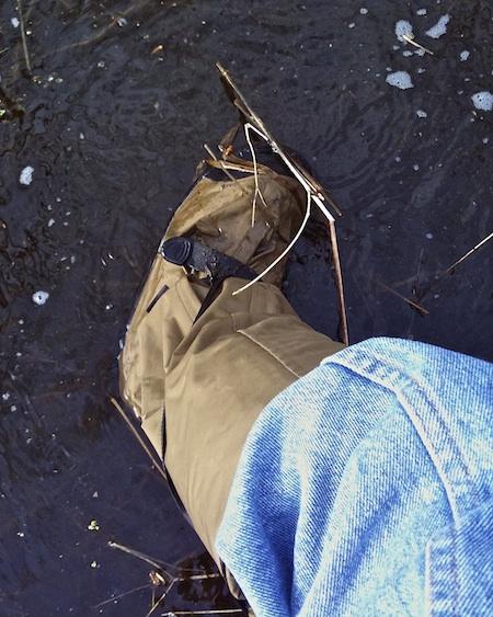 Iphone blue herons 4 4 10 2010 04 04 55 original