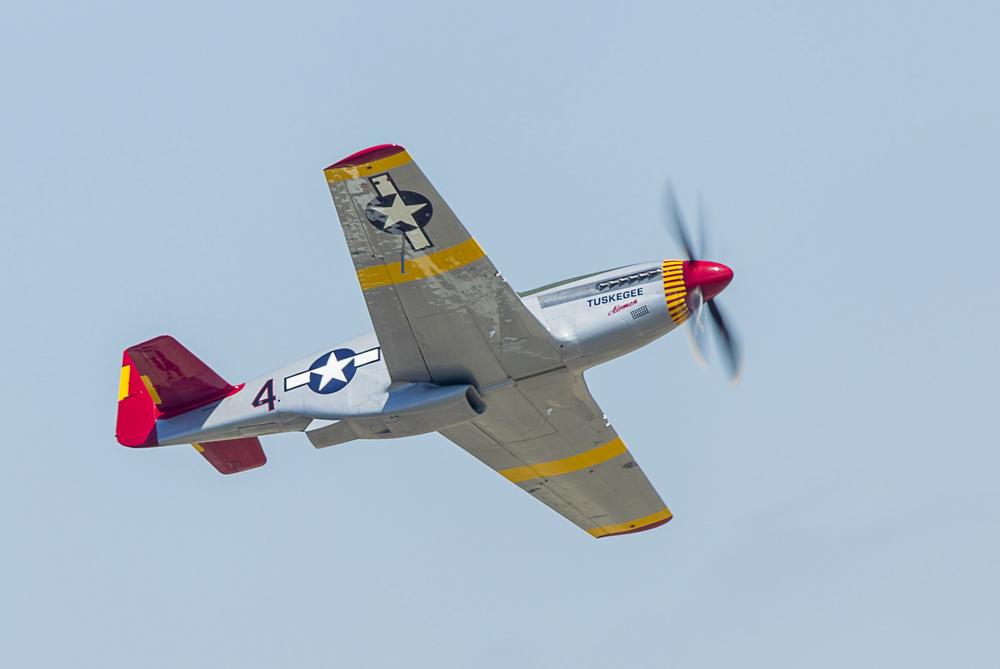 B65E1935.jpg