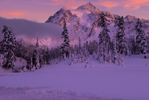 8 great winter hikes and walks in Washington