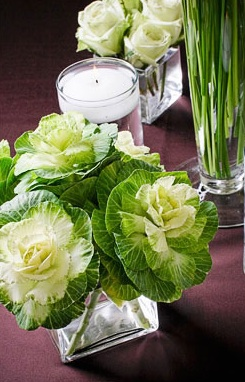 Cabbage Centerpiece