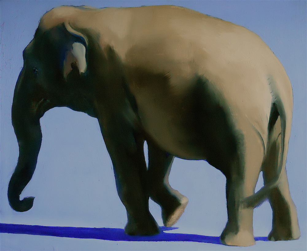 Elephant on Blue