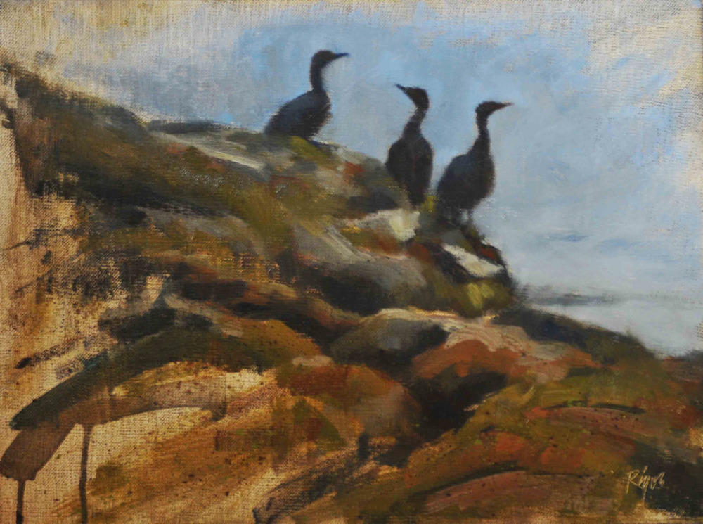 "Cormorants,    Oil on Panel, 16""x 18"""