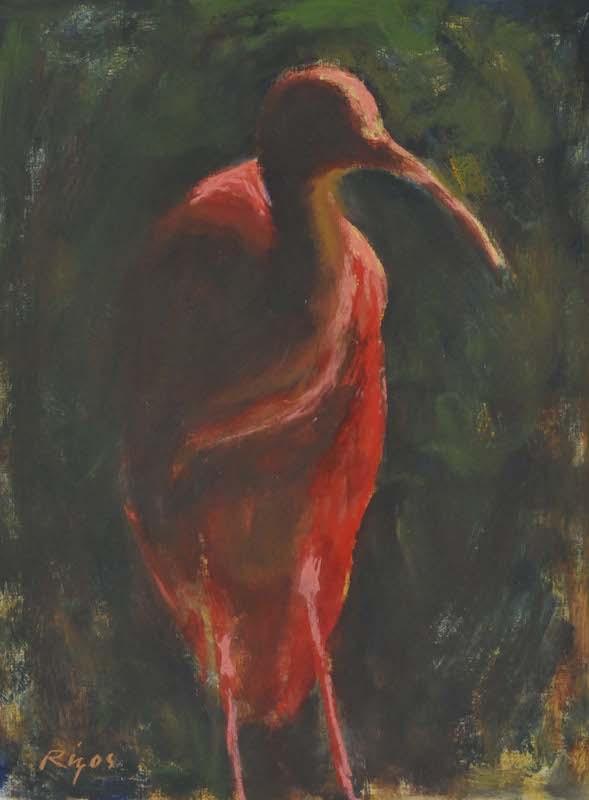 """Scarlet Ibis,   Pastel, 6""""x 10"""""""