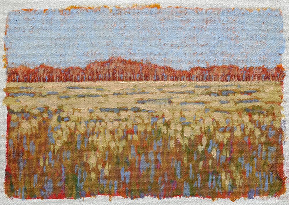 Study of Soybean Field
