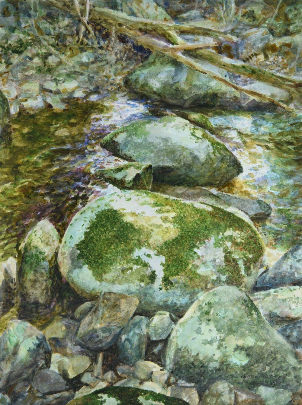 Hazel River Hop