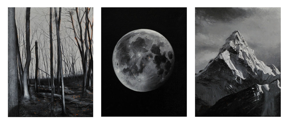 Natural World Triptych