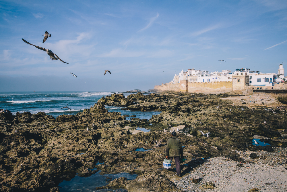 Atlantic Coast, Essaouira