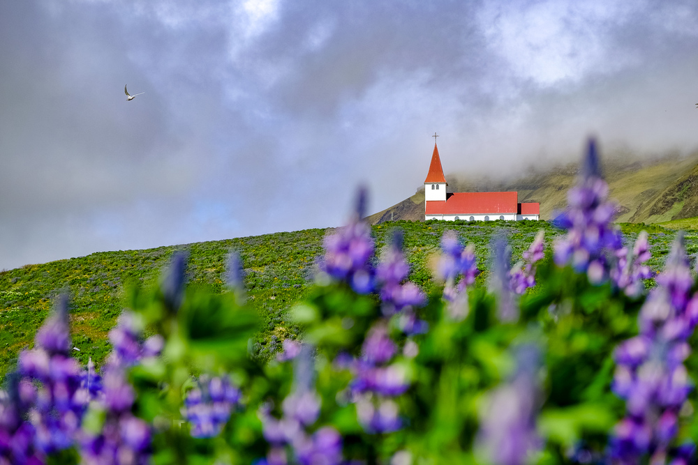 Iceland-PortfolioSquarespace-elliothaney (28 of 81).jpg