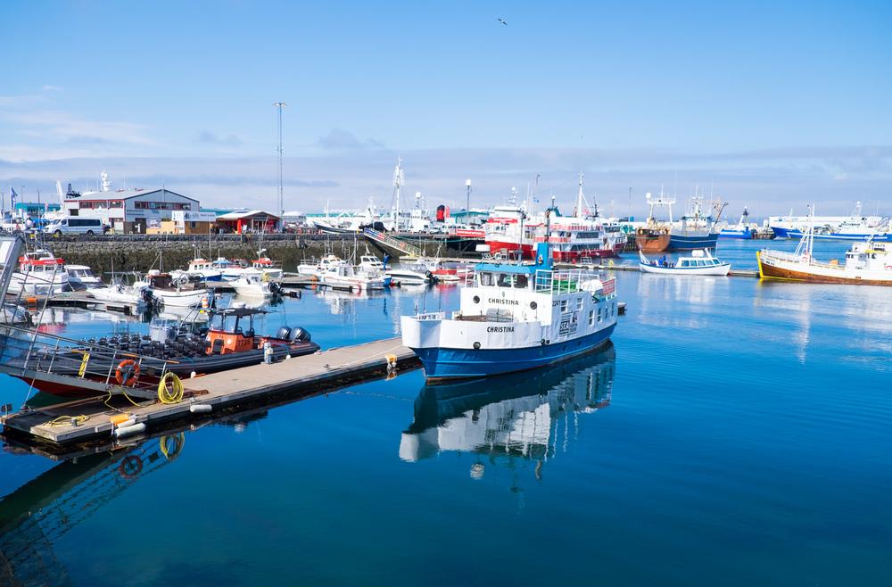 Iceland-PortfolioSquarespace-elliothaney (77 of 81).jpg