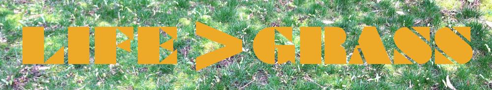 grass copy.jpg