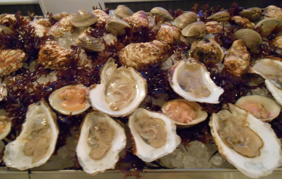 Raw bar: Wild oysters harvested by Billy Silvia of Bristol, RI; littlenecks, and Irish moss (red seaweed).