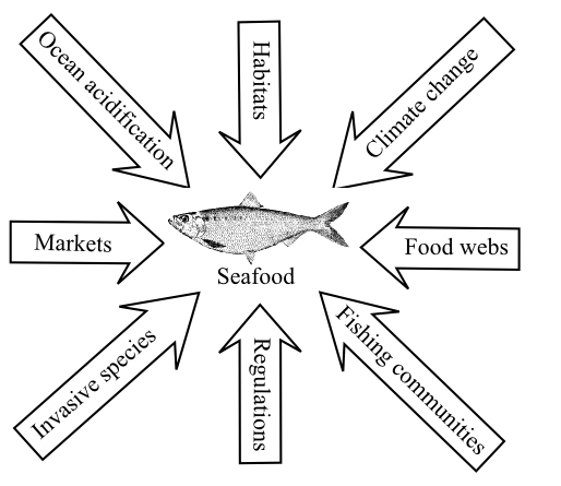 fish inputs graphic.jpg