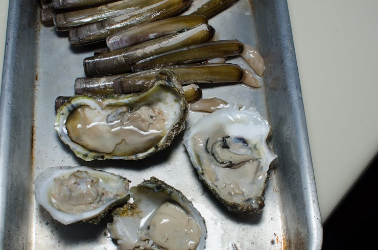 razors and oysters.jpg
