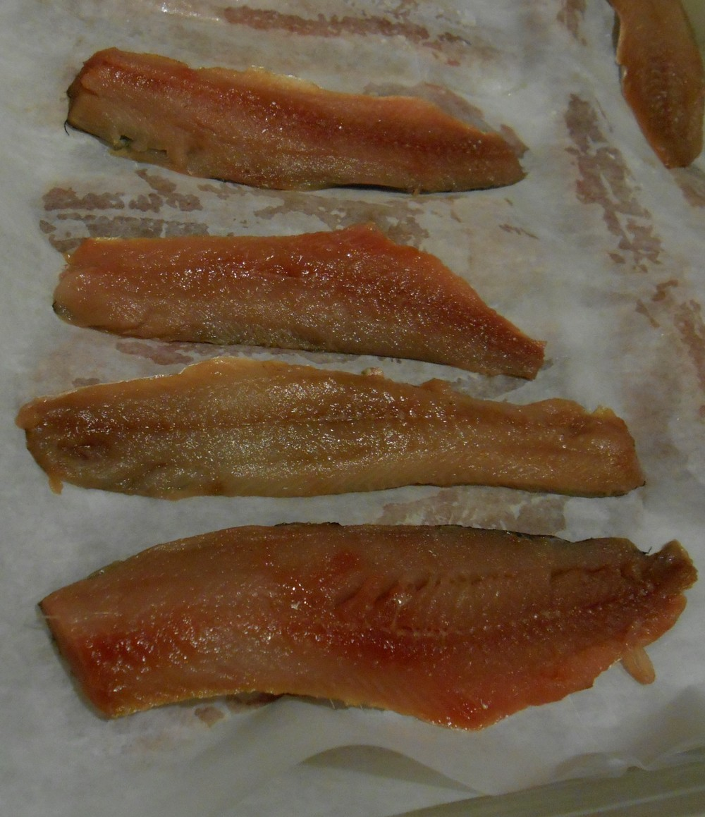 alewives raw.jpg