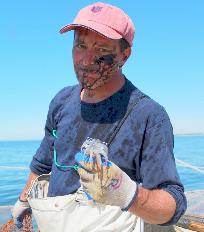 the author with his freshly caught squid. Photo credit: Steve swain