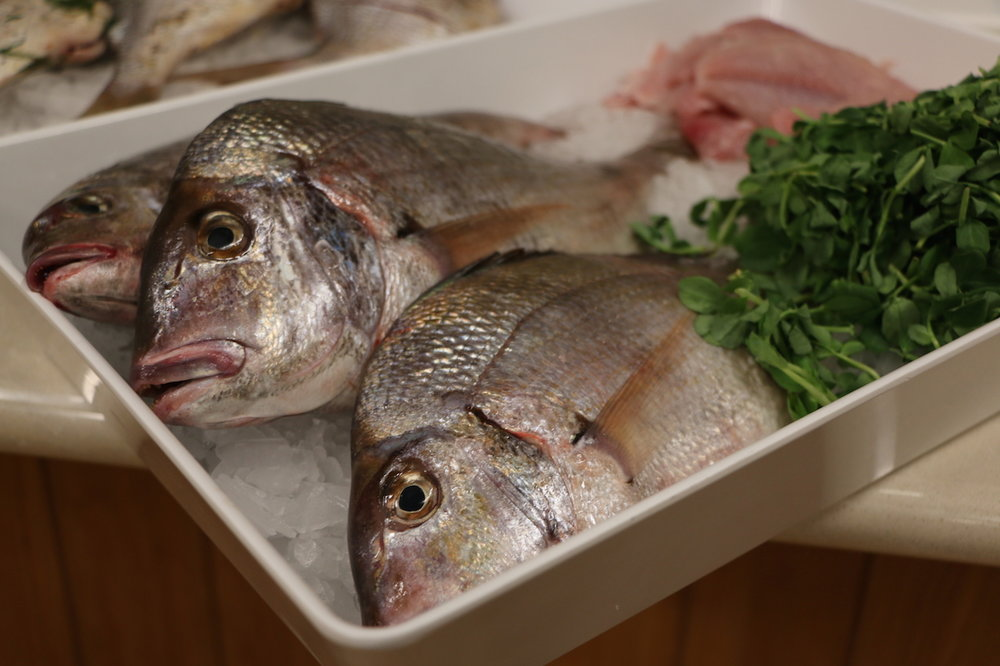 raw whole scup.JPG