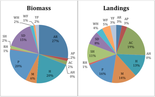 These preliminary pie charts hint at a significant disconnect between the ecosystem and the marketplace.. The chart on the left shows the species composition (major commercial species only) of New England's continental shelf ecosystem (all three eco-regions combined) using biomass data from stock assessments. The chart on the left shows proportions of landings. The biomass chart is based on real data from stock assessments and the landings chart is based on data available online from the NOAA Office of Fisheries Statistics. Species abbreviations: WF = Winter flounder; WH = White hake; YT = Yellowtail flounder; AR = Acadian redfish; AP = American plaice; AC = Atlantic cod; AH= Atlantic halibut; H = Haddock; M = Monkfish; P = Pollock, RH = Red hake, SH = Silver hake, and SD = Spiny dogfish. A quick glance at these indicates that some species have high landings relative to their proportion of biomass (e.g., winter flounder, cod, monkfish, and silver hake), while some have low landings relative to their proportion of biomass (e.g., Acadian redfish, haddock, spiny dogfish). An ecosystem-based marketplace would match the ecosystem much more closely. Eating with the Ecosystem is working with the University of Rhode Island to conduct more advanced analyses of ecosystem-marketplace mismatch.