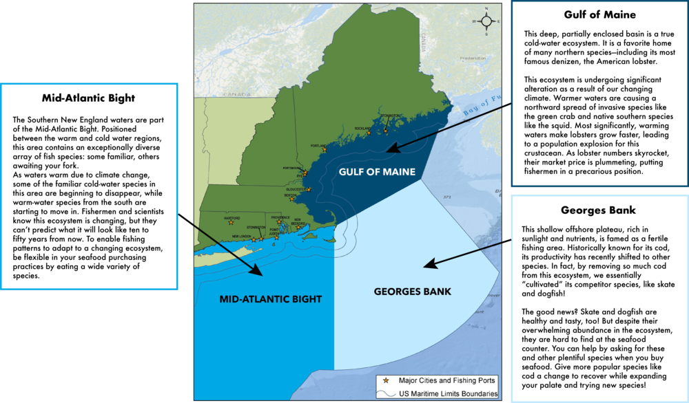Our New England Ecosystems — Eating with the Ecosystem