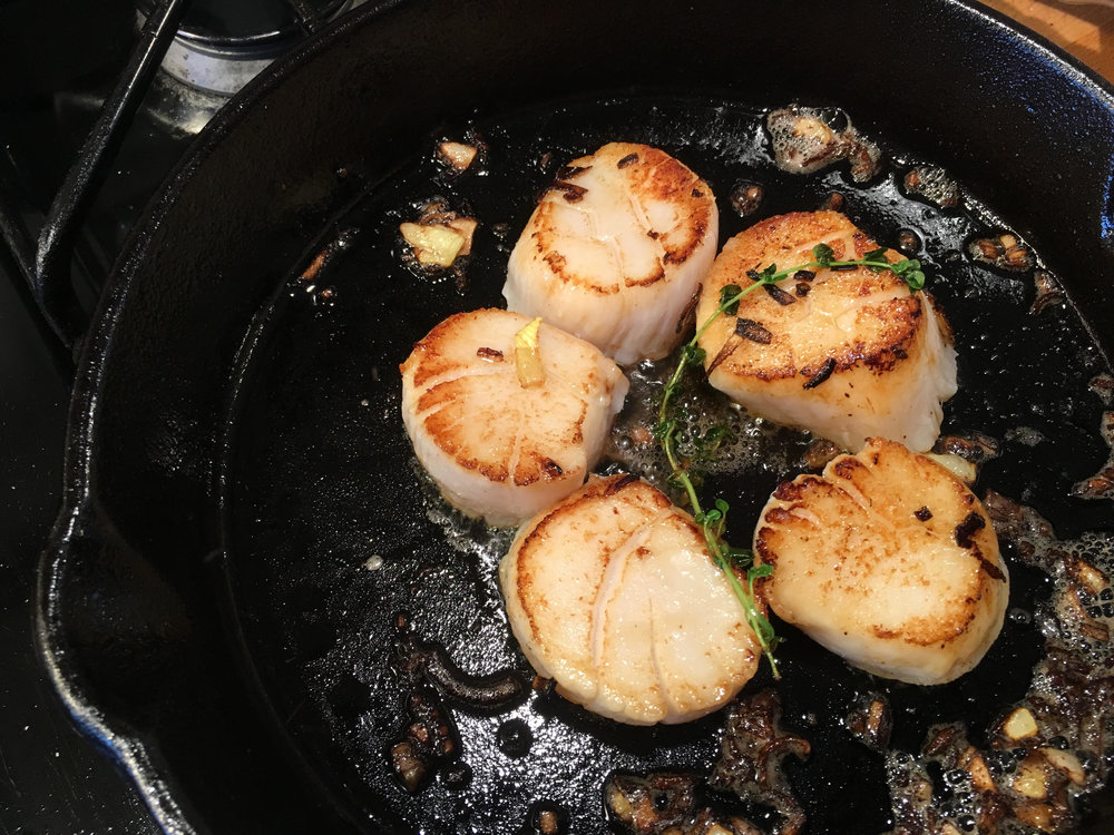 "Sea scallops landed in Provincetown by Jorge Dias, seared in a pan with butter, garlic, and a sprig of lemon thyme from our indoor ""garden"""
