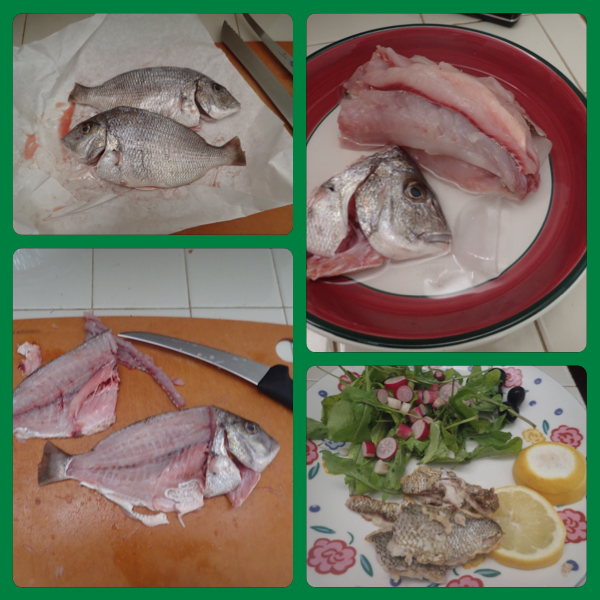 Fresh whole porgy to fillets to delicious meal with salad greens and radishes from local farmer's market.