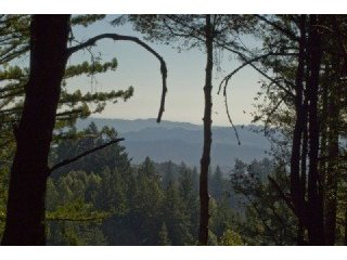 220-Allen-view.jpg