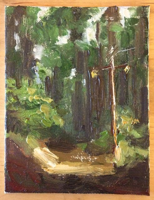 Into the Redwoods - 4x5 oil on panel