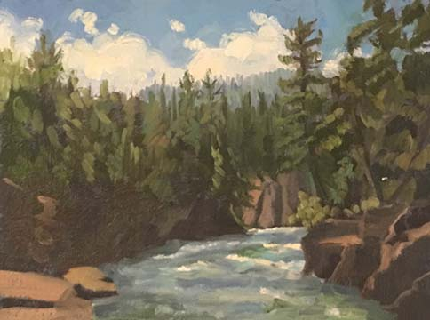 It was pretty warm in late June. We found this awesome little spot to paint one day. The breeze coming off the Flathead River gave us all day air conditioning. It was the perfect painting spot.