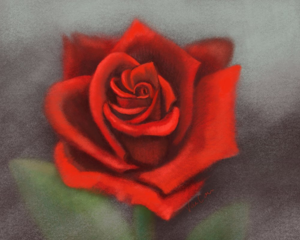 Red Rose Contemporary Flower Art