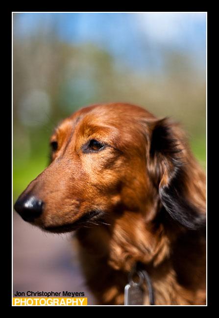 Portrait of Chaz