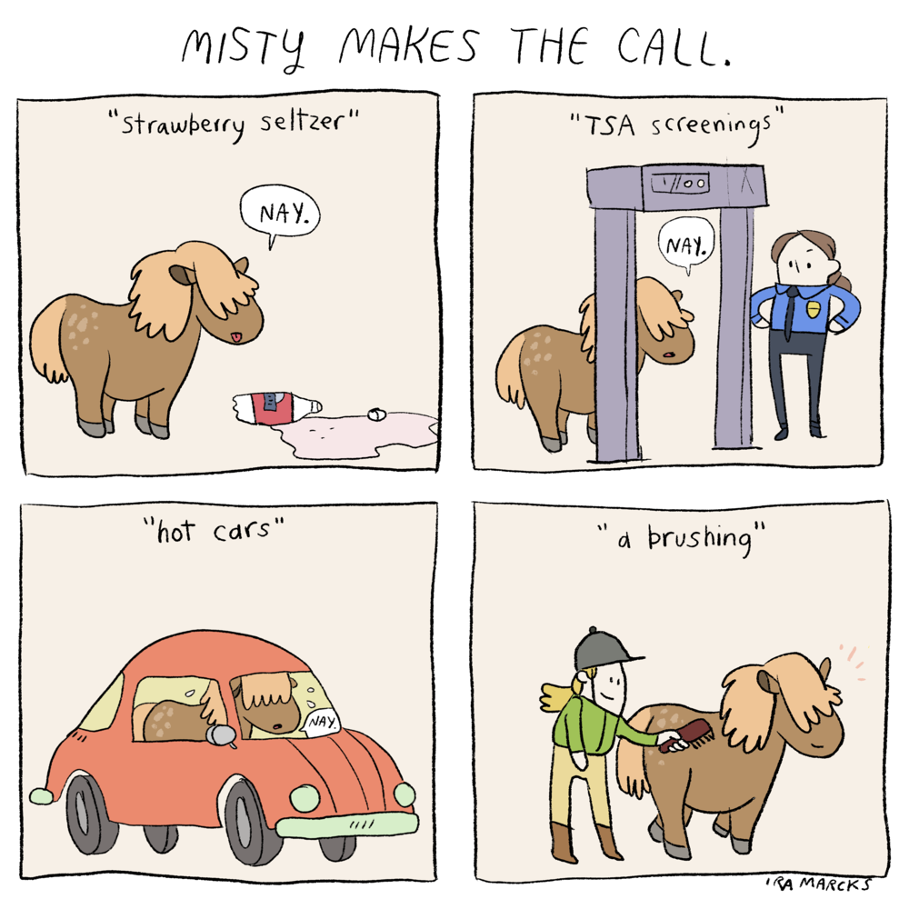 Misty Makes the Call v1.png