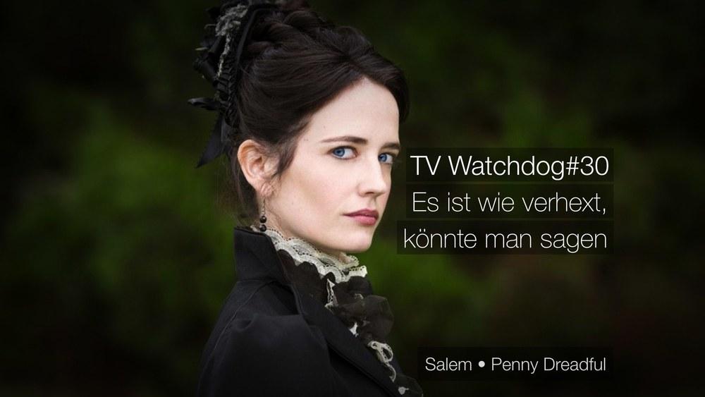 TV Watchdog#30 - Es ist wie verhext, könnte man sagen - Mit Benjamin Hahn, Felix Raczkowski und Christian Heinke