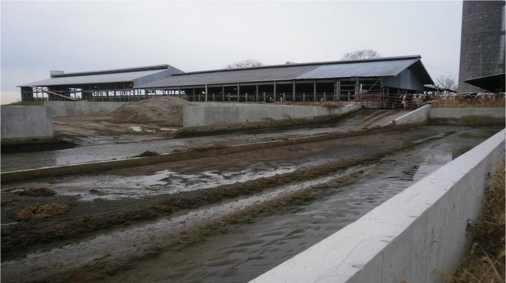 LS dairy Arentsen sand lane.jpg