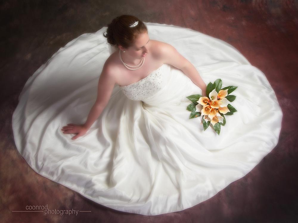Elegant Bridal Portrait...