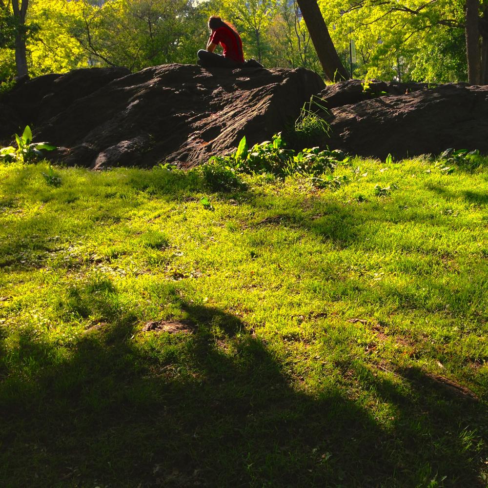 centralpark_green-9425.jpg