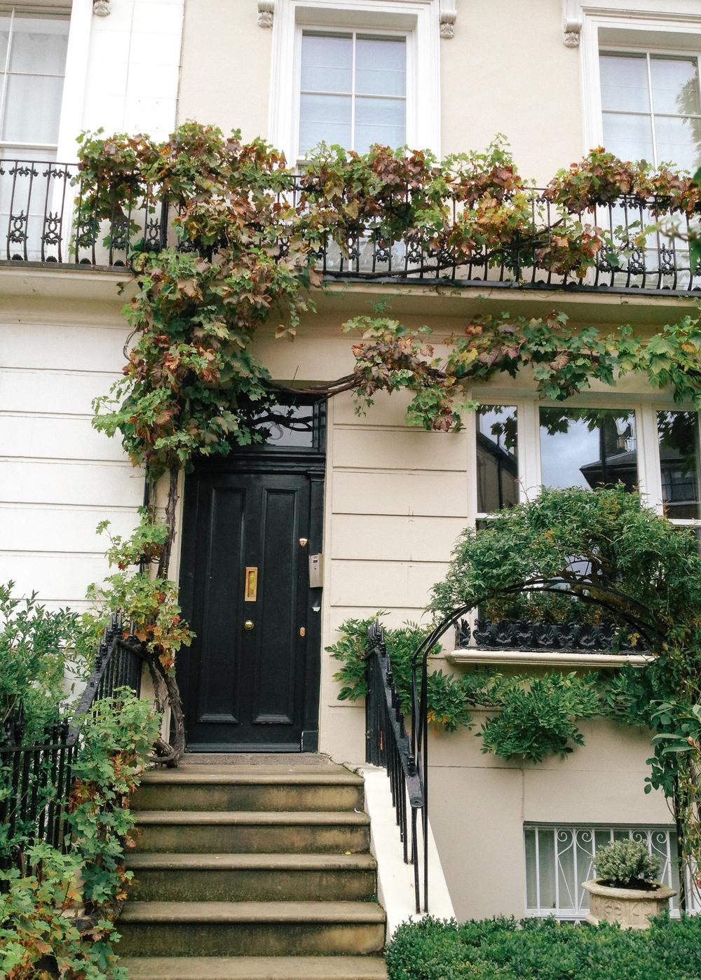 london_wildvine-5743.jpg