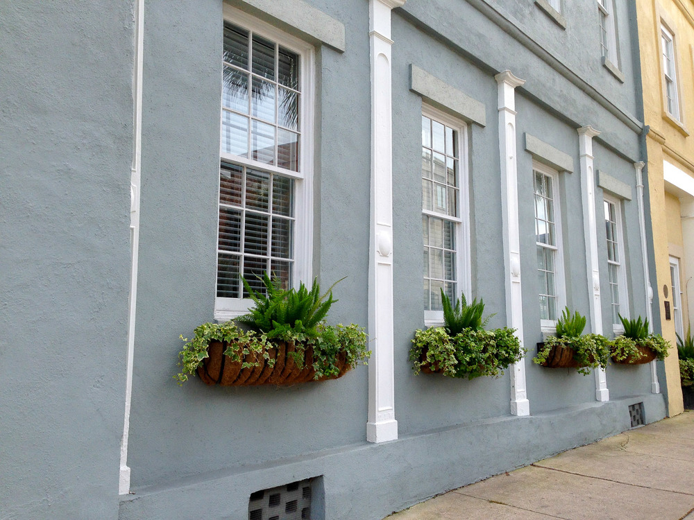 Windowboxes-2326.jpg