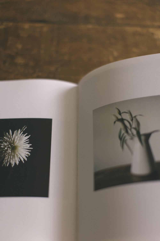 book-3671.jpg