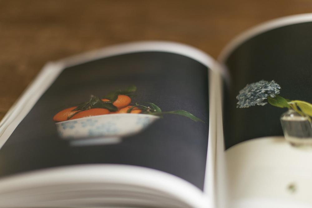 book-3667.jpg