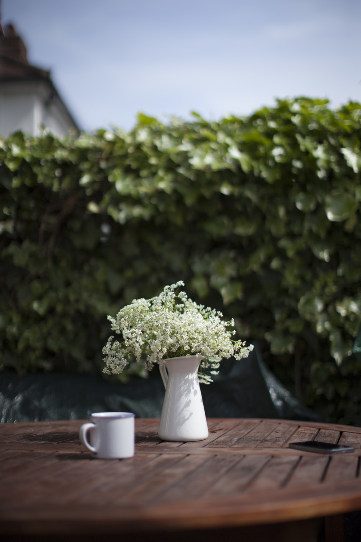 coffee_queenanneslace-4662.jpg