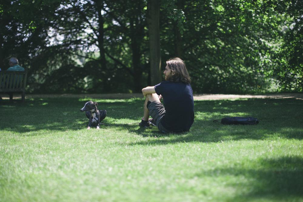 boydog-2.jpg