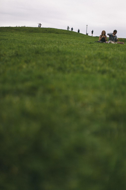 greenisgreenisgreen.jpg
