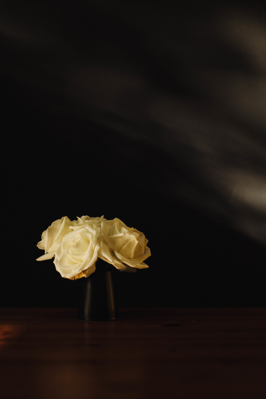 creamyblooms-0483.jpg