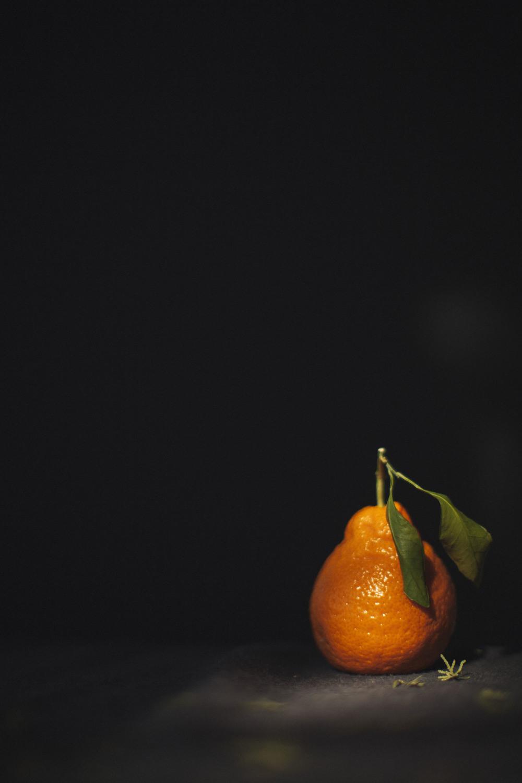 Clementina-2.jpg