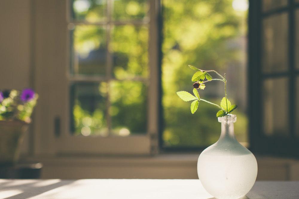 Be Still Landscape-9552.jpg