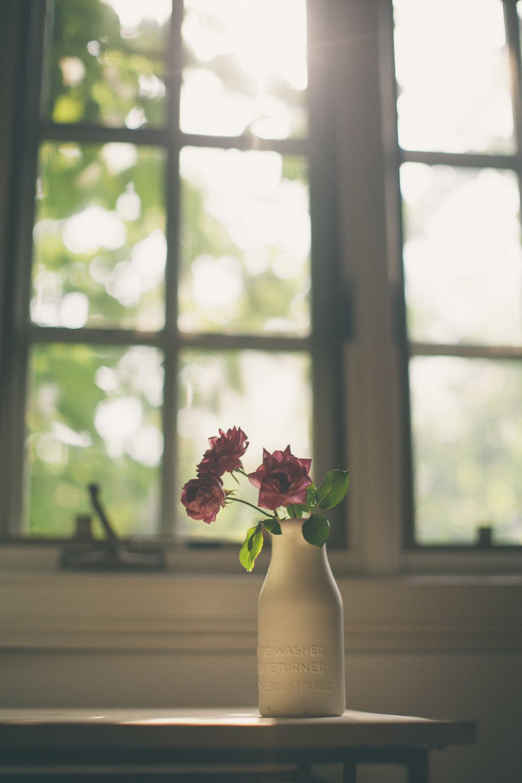 Foraged Roses Office-9622.jpg