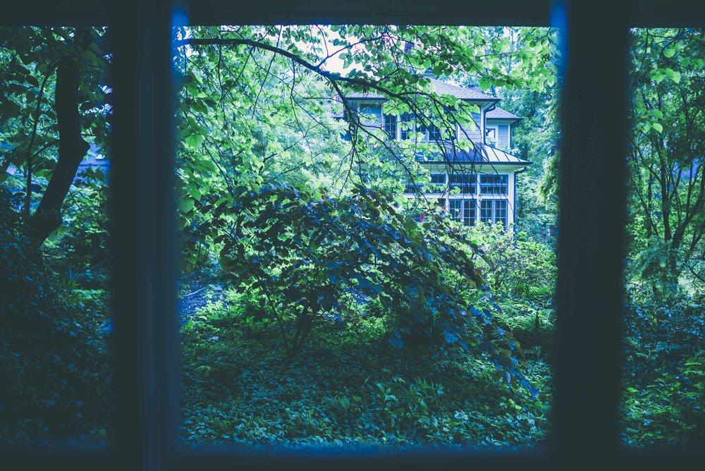 Into the garden-0596.jpg