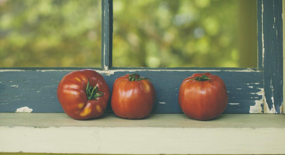 Window+Tomatoes+2-9396.jpg