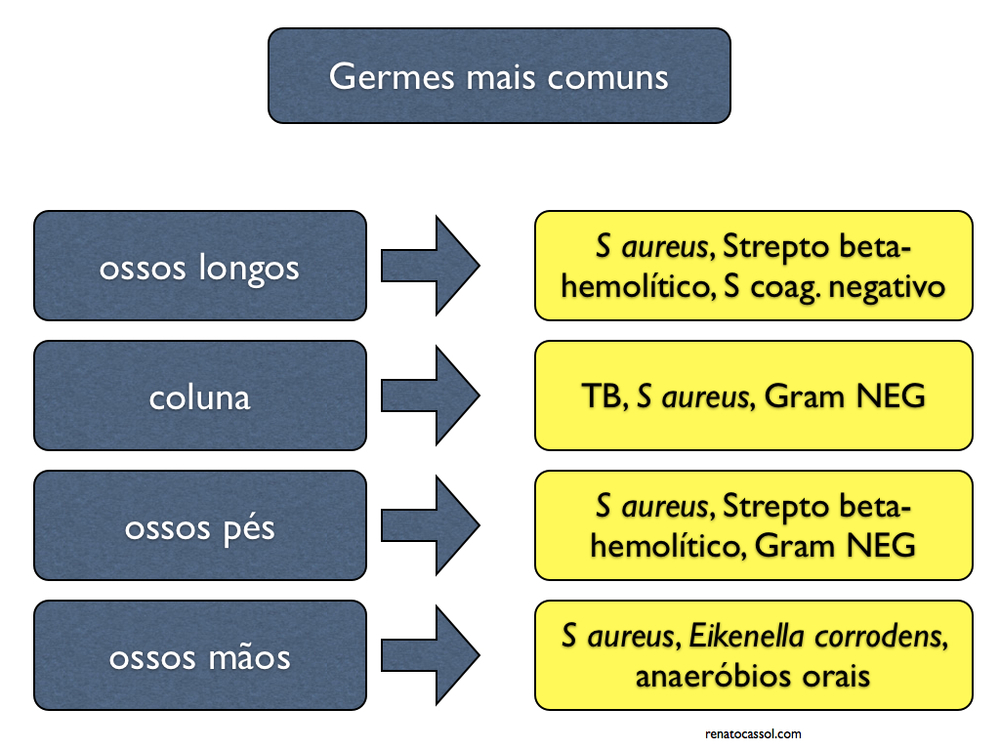 osteomielite crônica germes comuns 2.029.jpg