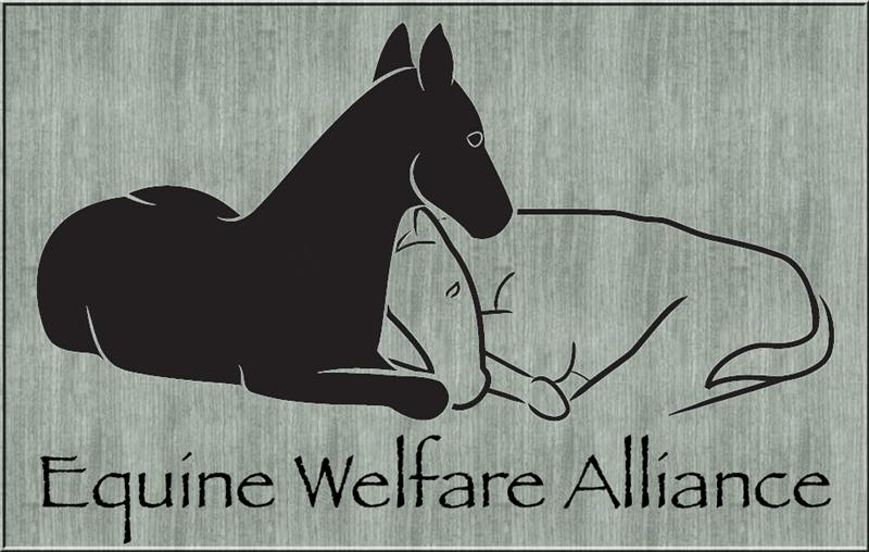Equine welfare alliance.jpg