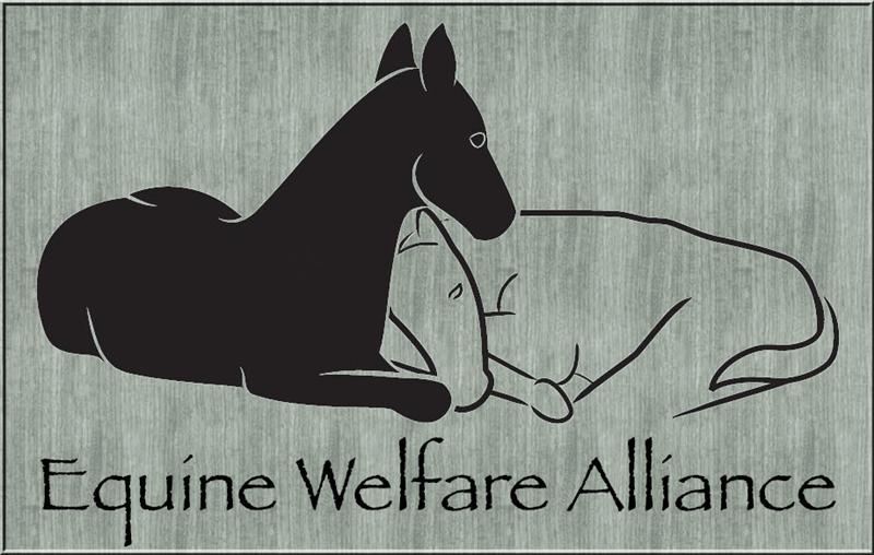 Equine welfare alliance.jpg